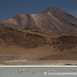 Flamingo Mountain - Salar Tour, Bolivia