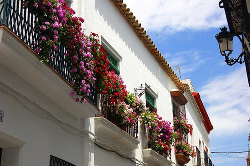 Balcon adornado con flores. Carmona.