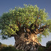 The Magnificent Tree of Life by IceNineJon