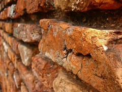 ancient history(0.0), soil(0.0), wood(0.0), rust(0.0), formation(0.0), trunk(0.0), lumber(0.0), iron(0.0), rock(0.0), macro photography(1.0), geology(1.0), close-up(1.0), brick(1.0),