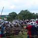Battle Of Tewkesbury #9