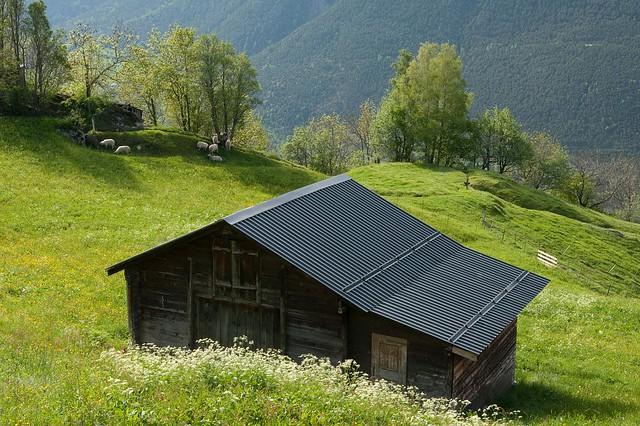Birgisch