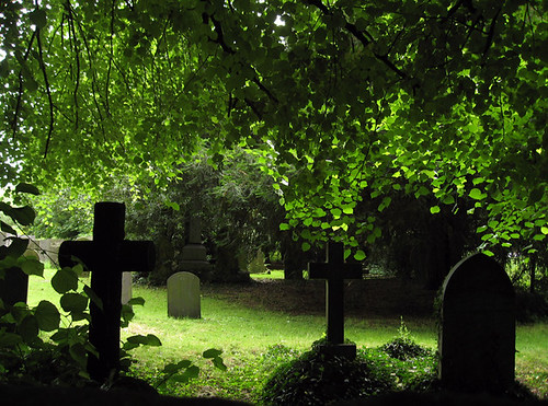trees green grass leaves dark cross derbyshire crosses graves churchyard dappled gravestones stchads de72 churchwilne