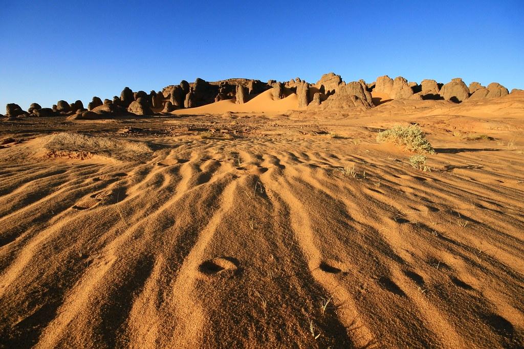 اجمل صحراء في العالم  - صفحة 2 3896879541_50c551b466_b