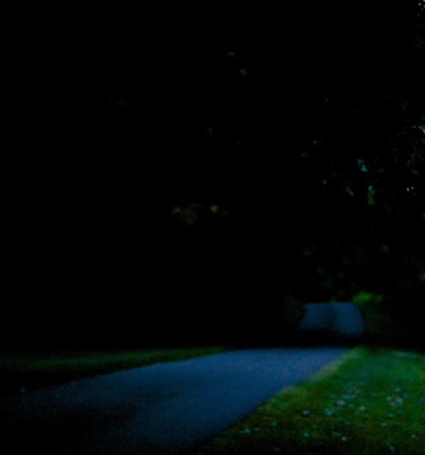 Driveway Night Lights