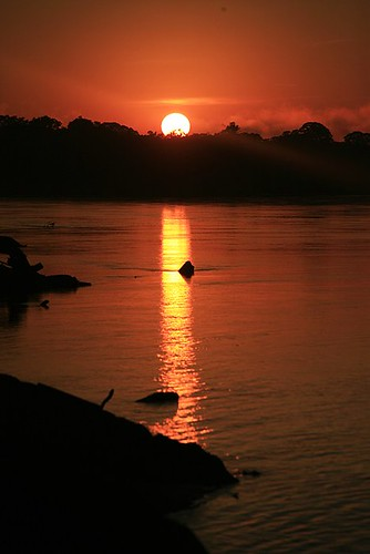 peru southamerica sunrise river amazon rainforest jungle amazonia madrededios peruvianamazon