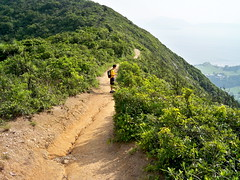 Dragons Back - For all Hiking Enthusiasts - Things to do in Hong Kong