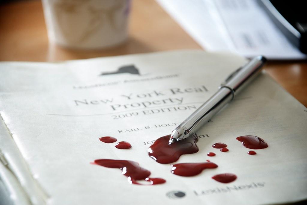 Good government me essay writing contest