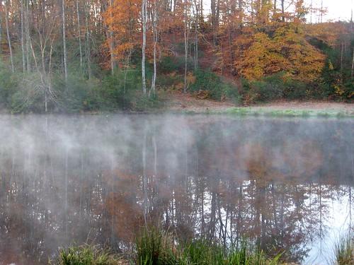lake mahockney mahockneygardens