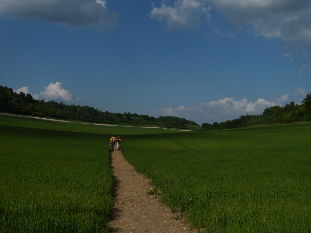 Monoculture Valley Cholsey to Goring