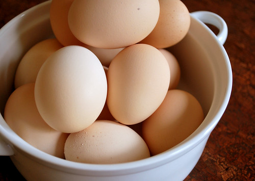 Why Organic Eggs From The Store Are A Scam