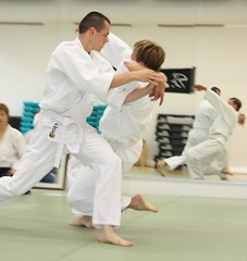 aikido(1.0), individual sports(1.0), contact sport(1.0), sports(1.0), tang soo do(1.0), combat sport(1.0), martial arts(1.0), judo(1.0), taekkyeon(1.0), japanese martial arts(1.0), jujutsu(1.0), shorinji kempo(1.0),