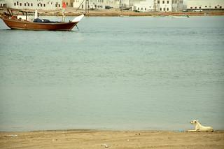 Sultanat   d'Omaneis  -  Sur