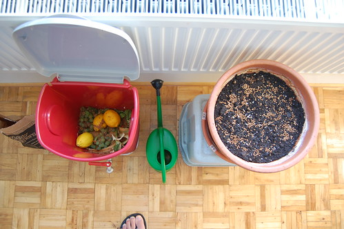 indoor composting and gardening