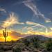 Saguaro Sol [Explore #1!] by caddymob