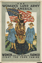 The woman's land army of America. Women enlist now and help the farmer fight the food famine