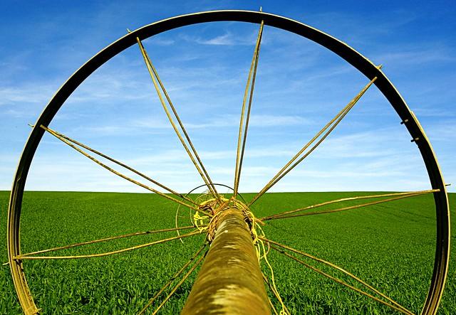 wheel line art