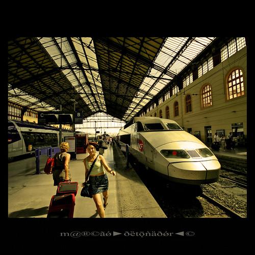 france tren trenes marseille stcharles ferroviario provencealpescôtedazur canoneos400ddigital thelasttrain m®©ãǿ►ðȅtǭǹȁðǿr◄© garedemarseille sigma10÷20mmexdc marcovianna estacióndemarsella