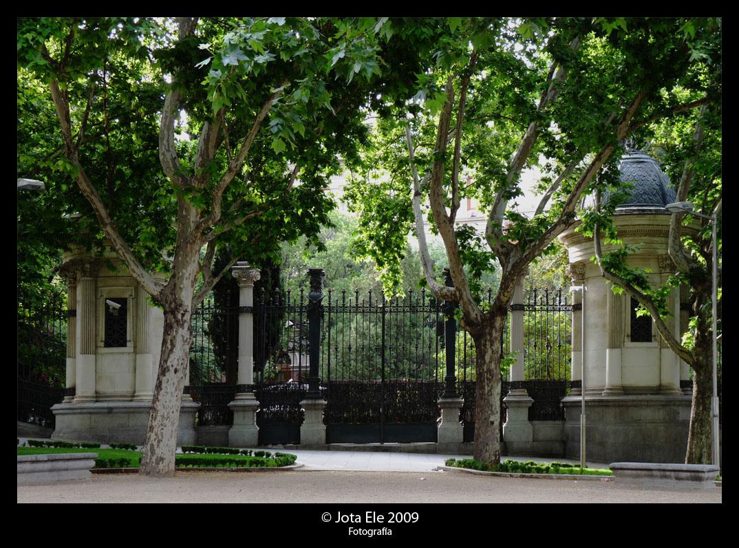 De madrid al cielo jard n bot nico for Jardin botanico madrid conciertos