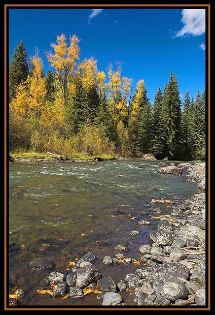 Owl Creek Flickr Photo Sharing