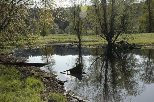 water beauty oregon upload pond scenic vernonia 20090618