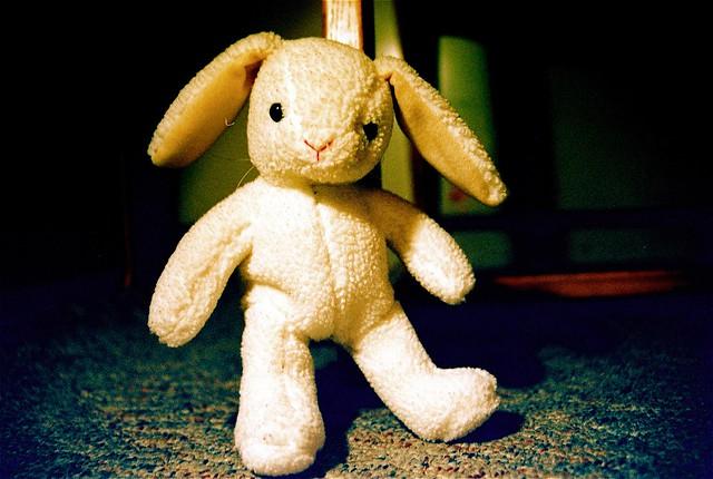 My Velveteen Rabbit from Flickr via Wylio