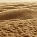 dunes by DarkFrame