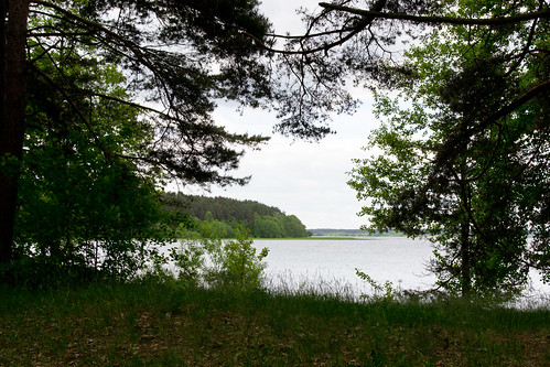lake latvia pines handwork riga ordinarypeople rīga latvijasetnogrāfiskaisbrīvdabasmuzejs latvianethnographicoutdoormuseum ethnographicsite historiclifeinlatvia