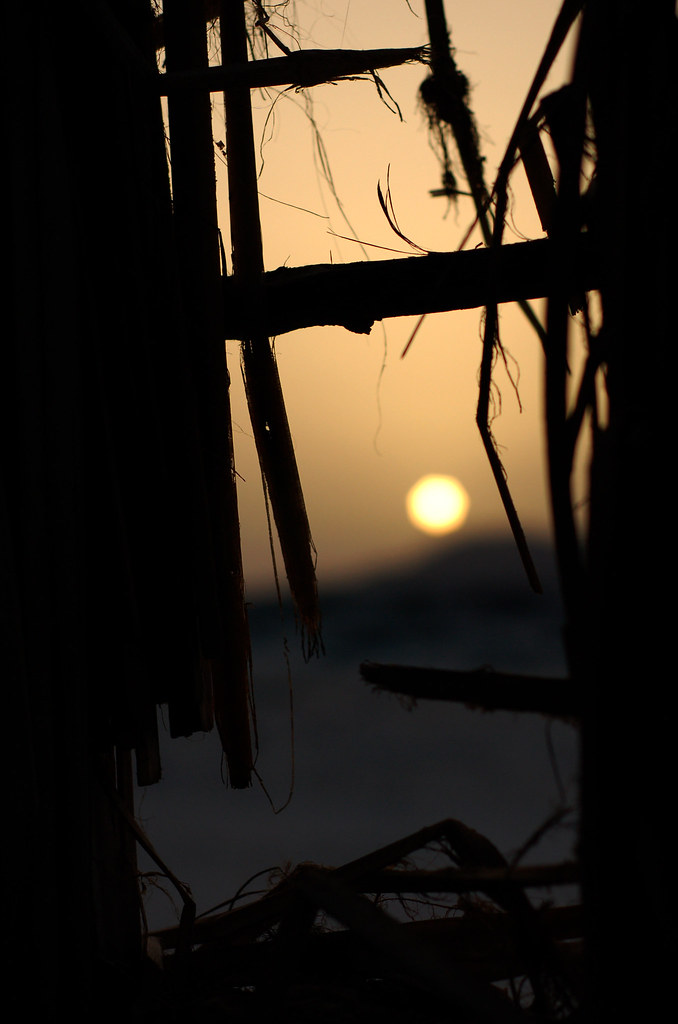 Sunset through beach hut window, Bir Ali, Yemen