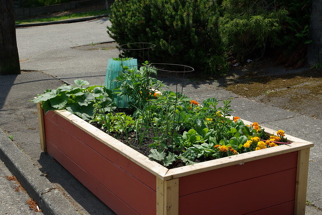 Raised vegetable garden layout - Raised Bed Vegetable Garden Flickr Photo Sharing