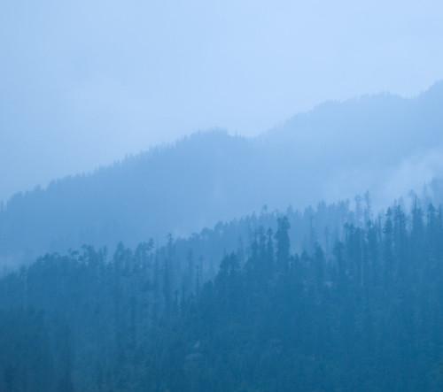 blue sunset mist mountains fog cedar manali himalayas himalayancedar koinahin2009