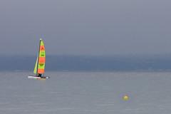 beach(0.0), ice boat(0.0), sail(1.0), sailboat(1.0), sailing(1.0), vehicle(1.0), sailing(1.0), sports(1.0), sea(1.0), bay(1.0), wind(1.0), boating(1.0), watercraft(1.0), windsurfing(1.0), boat(1.0),