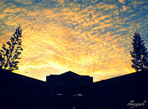 morning blue light sky cloud sun black color building tree colors silhouette start sunrise fire gold dawn golden day glorious beginning ju bangladesh bangla chhayapath