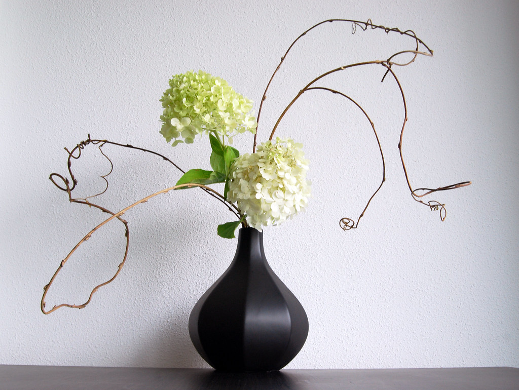 ikebana flower arrangement with hydrangea a photo on. Black Bedroom Furniture Sets. Home Design Ideas