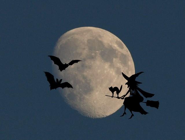 Happy hallowenn Moon !!!