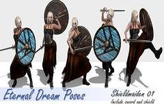Shieldmaiden 01