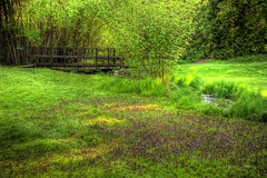 Garden Springs Creek