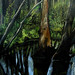 "Amy Feger, ""Panorama at Ebeneezer Swamp""oil on canvas (detail) 1 by carmichaellibrary"