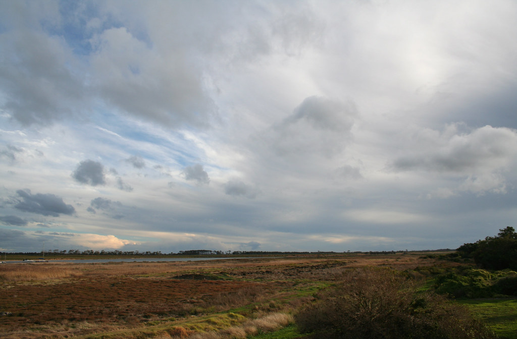 20090712 3596 Grahams Wetland Reserve, Werribee South