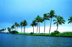 Backwaters - Alappuzha