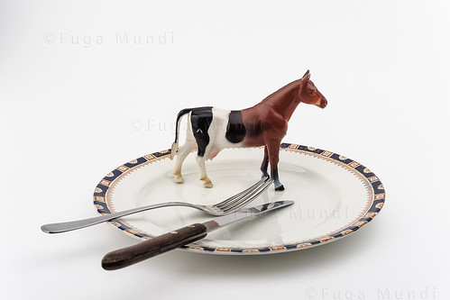 Beef or horsemeat?