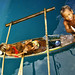 The Sea gypsy children at Tagbilaran port ( Bohol island ) by pickled_newt