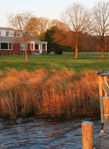 moon grass dock chesapeakebay churchcreek maryand rudderow