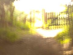 Knole Park gate
