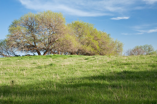 ranch travel blue sky sunlight tree green tourism nature beauty field grass clouds rural landscape outdoors countryside spring day farm bare traditional country hill farming rustic grow meadow bluesky pasture kansas growing hillside prairies springtime acreage praire
