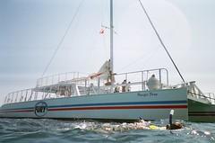 motor ship, vehicle, sailing, ship, sea, mast, watercraft, catamaran, boat,