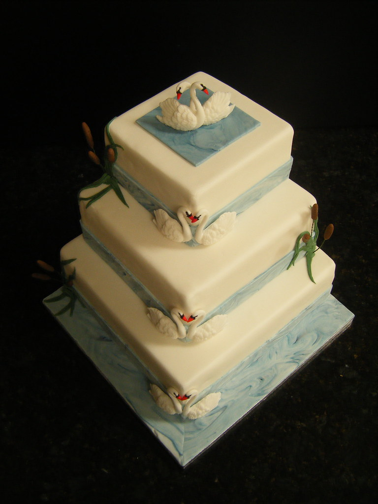 Cakeology ~ Handmade Cakes from East Midlands, UK\'s most interesting ...