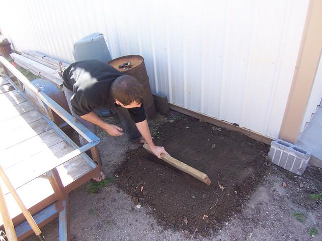 level the turned soil