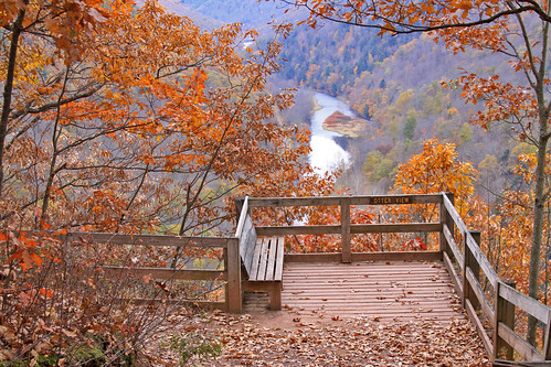 autumn fall leaves pennsylvania grandcanyon wellsboro route6