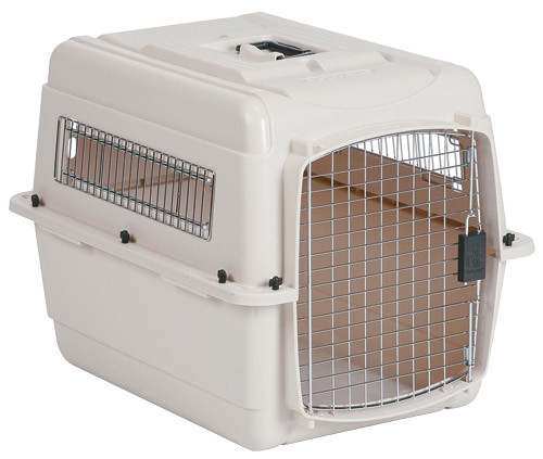 Crate kennel large flickr photo sharing for Xl dog travel crate
